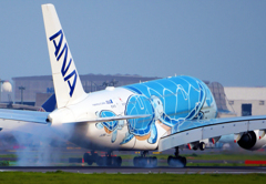 "ANA A380 ""Flying Honu"" 初号機"