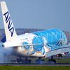 """ANA A380 """"Flying Honu"""" 初号機"""