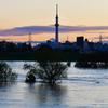 台風一過・・水没した河川敷ゴルフ場とスカイツリー