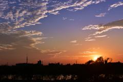 江戸川の夕陽