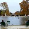 ルーブル美術館近くの池で寛ぐ