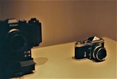 フイルムカメラ「NIKON」