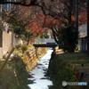 #3:排水路