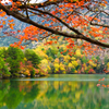 湖畔の紅葉