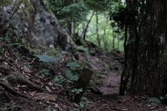 登山道(岩めぐり)