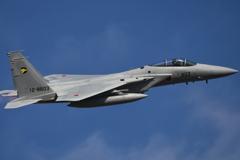 入間基地航空祭F15J帰投