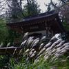 浄智寺 十月