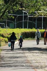 公園散策―進む