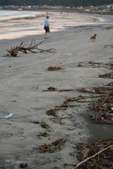 材木座海岸の朝