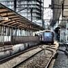 東京さくらトラム(都電荒川線) (1)