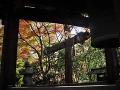 晩秋の深大寺 鐘楼