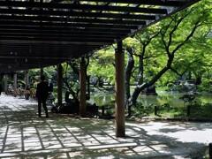 日比谷公園③
