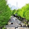 ポーリン橋より (6)