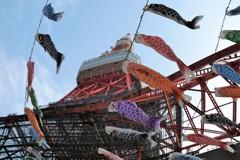 東京タワーと鯉のぼり①