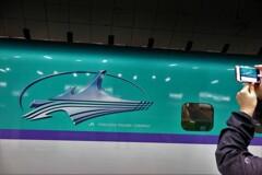 はやぶさ29号(H5系新幹線)