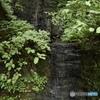 山口の不動滝