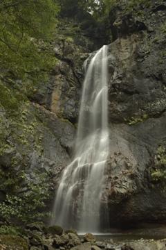 初撮りの滝へ再々訪問walk