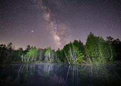 こんな静かな森の夜