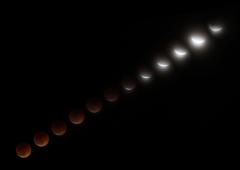 月食の観察