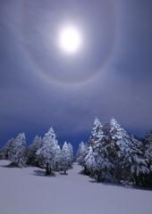 月光と白の世界