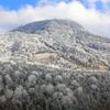 霧氷の横手山