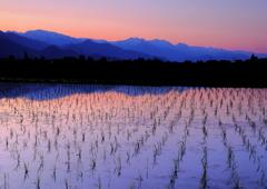 安曇野より北アルプスの夕暮れ風景