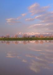 ある桜のある風景