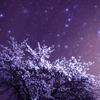 春の北斗七星