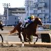 ■2020-01-03_川崎競馬場 (11)