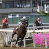 ■2019-05-03_浦和競馬場 (55)