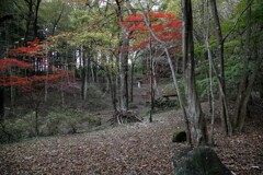 秋森の聖像