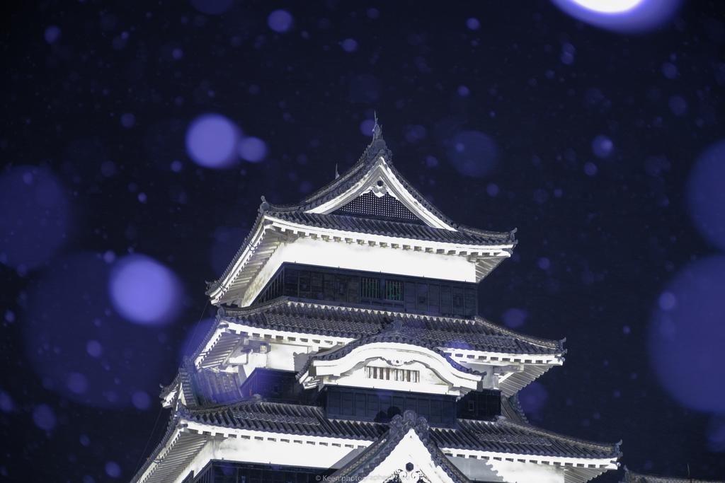 雪の日・天守閣