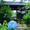資福寺の山門