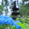資福寺の庭園