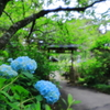 資福寺庭園