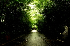 浄土への道