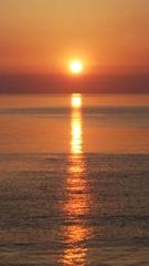 新緑の夕日2 双海