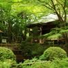 中尊寺 庭園