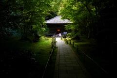松島 円通寺
