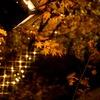 秋が待ち遠しくて