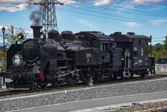 SL大樹蒸気機関車