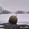 凍てつく湖にてーその1