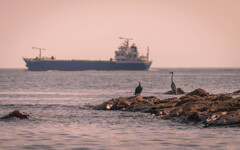 Two birds and a big ship