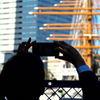 帆船日本丸の大規模修繕(#2)