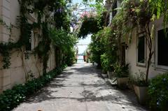 路地の風景