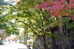 姫路城の北 4