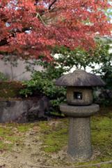 姫路城好古園 14