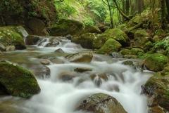 夏の谷太郎川