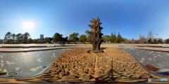 早春の公園(2) Gear360版