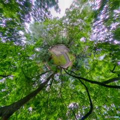 公園の緑 - リトルプラネット